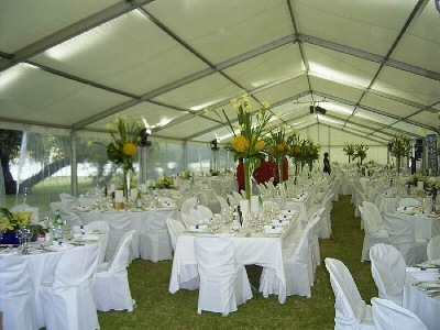 Services events auckland junglespirit Image collections